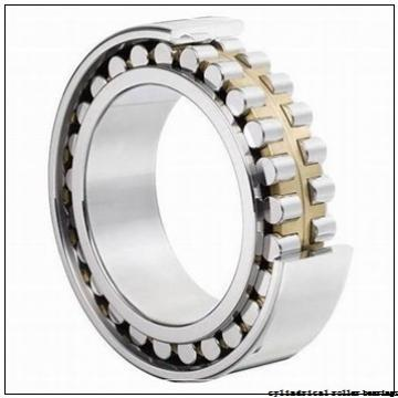80 mm x 125 mm x 60 mm  INA SL185016 cylindrical roller bearings