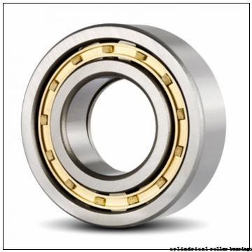 45 mm x 85 mm x 19 mm  Fersa NU209FMN cylindrical roller bearings